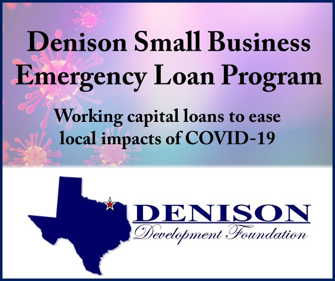 graphic DDF loan program bottom logo